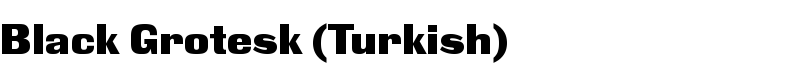 Black Grotesk (Turkish) font by Paratype