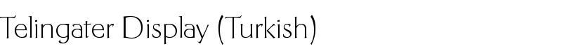 Telingater Display (Turkish) font by Paratype