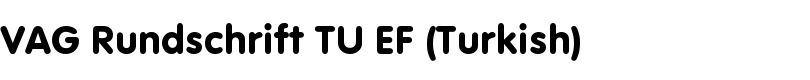 VAG Rundschrift TU EF (Turkish) font by Elsner+Flake