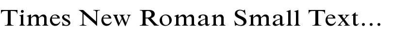 Times New Roman® Small Text Regular