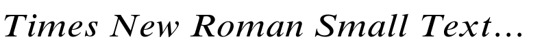 Times New Roman® Small Text Italic